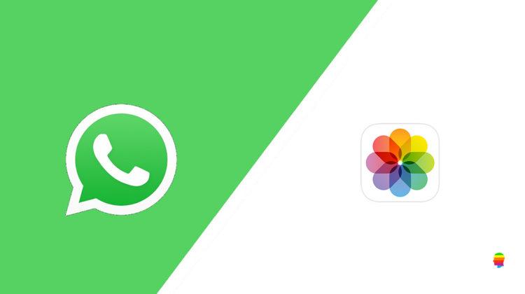 Spostare, salvare foto, video da WhatsApp su galleria iPhone