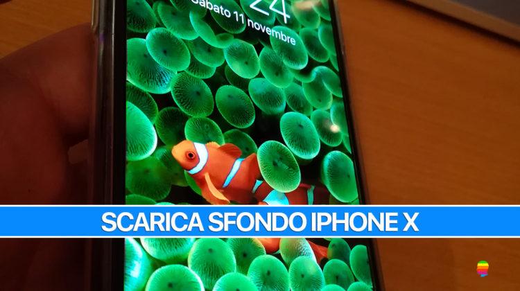 Sfondo iPhone X pesciolini pagliaccio (Nemo) iPhone 2G/Edge